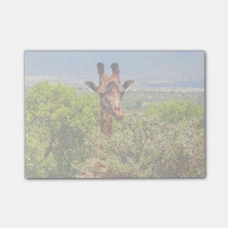 Post-it® Girafe adorable poussant sa tête au-dessus des