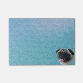 Post-it® Gros portrait de carlin