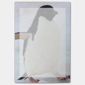 Post-it® L'Antarctique. Île de Petermann. Pingouin d'Adelie