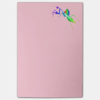 Post-it® Mante et crapaud d'arc-en-ciel
