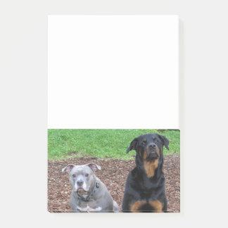 Post-it® Notes d'amis de Pitbull et de rottweiler