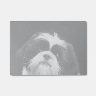 Post-it® Notes de post-it de chien de Shih Tzu