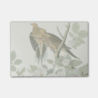 Post-it® Oiseaux de John James Audubon de pigeon de la