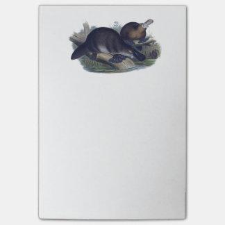 Post-it® Ornithorynque sur une illustration de rondin