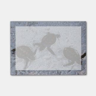 Post-it® Plan rapproché des hatchings 2 de tortue de mer
