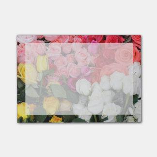 Post-it® Roses à vendre, San Miguel de Allende, Mexique