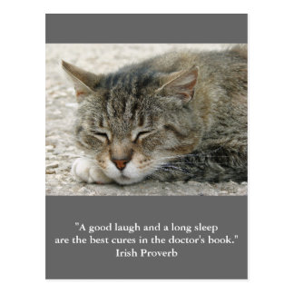 Postcard cat with quote « a good laugh and… « carte postale