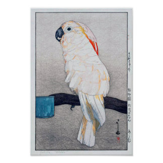Poster オウム de ・ de オオバタン, cacatoès Saumon-crêté, Yoshida