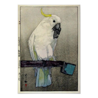 Poster オウム de ・ de キバタン, cacatoès Soufre-crêté, Yoshida