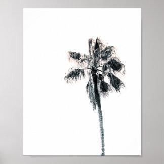 Poster Affiche | 8x10 rose de palmier