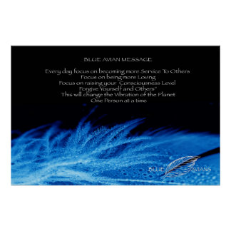 Poster Affiche aviaire bleue