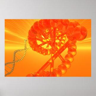 Poster Affiche d'ADN