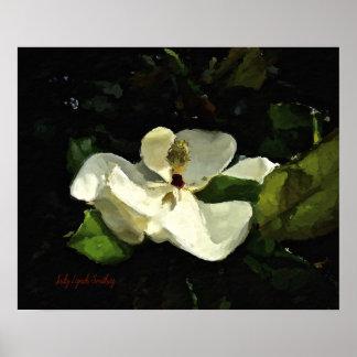 Poster Affiche d'art de magnolia du sud