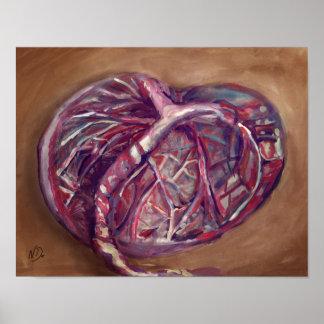 Poster Affiche d'art de placenta - bureau de sage-femme,