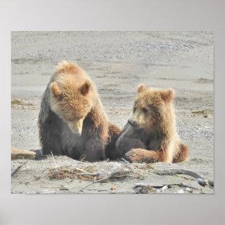 Poster affiche de 2 petits animaux d'ours sur la plage