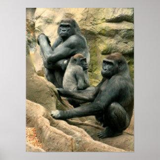 Poster Affiche de famille de gorille