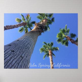 Poster Affiche de palmiers de Palm Spring