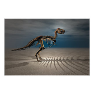 Poster Affiche de squelette de dinosaure de rex de T.