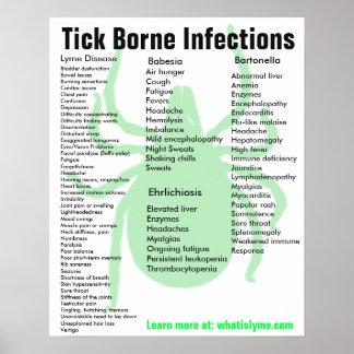 Poster Affiche éducative de symptômes d'infections