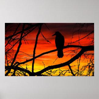 Poster Affiche gothique de coucher du soleil de corneille