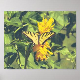 Poster Affiche jaune de nature d'insectes de papillons de