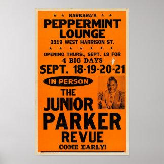 Poster Affiche junior de concert de salon de menthe