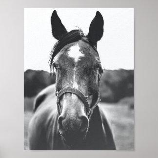 Poster Affiche noire et blanche de photo de portrait de
