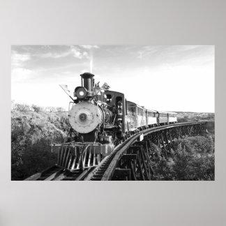 Poster affiche noire et blanche de train_Hawaii de canne