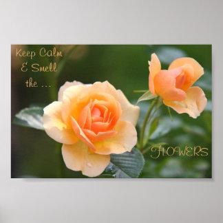 Poster affiche Pêche-colorée de fleur