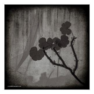 Poster Affiche photographique de beaux-arts - fleur