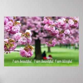 Poster Affiche rose de fleurs de cerisier