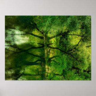 Poster Affiche superbe de la réflexion A3 d'arbres de la
