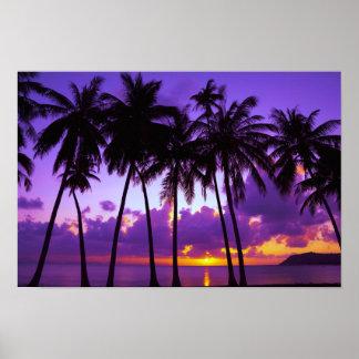 Poster Affiche tropicale pourpre du coucher du soleil 3