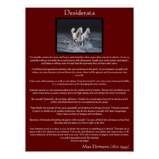 Poster Affiches Arabes blanches de cheval de desiderata