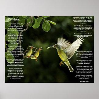 Poster Affiches de colibri de desiderata