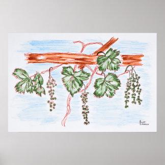 Poster Aquarelle des vignes avec des raisins | France