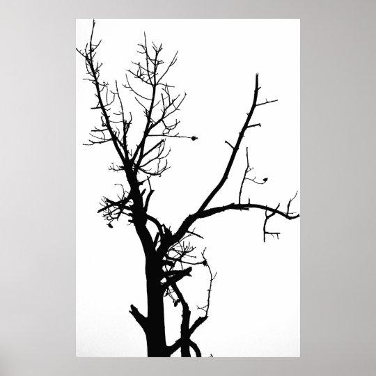 poster arbre nu noir et blanc. Black Bedroom Furniture Sets. Home Design Ideas