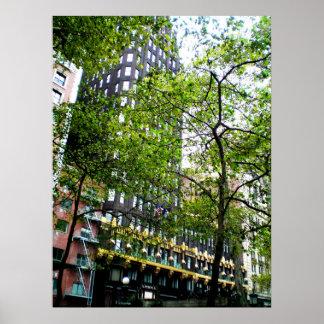 Poster Arbres américains de bâtiment de radiateur