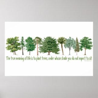 Poster Arbres de plante - amant d'arbre, Hugger