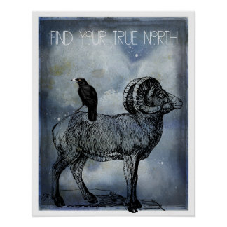 Poster Art de moutons et de corneille de Big Horn de nord