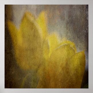 Poster Art floral rustique de fleurs jaunes de tulipes