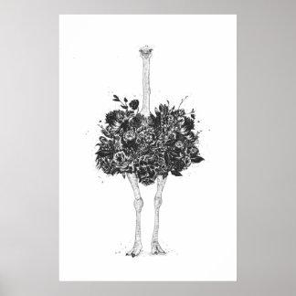 Poster Autruche florale