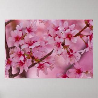 Poster Baigné en affiche japonaise rose de fleurs de