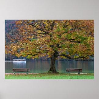 Poster Bateau sur un lac dans la chute, Allemagne