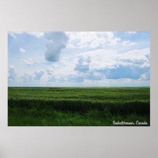 Poster Beau jour dans les prairies