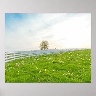Poster Beau paysage de campagne en ressort