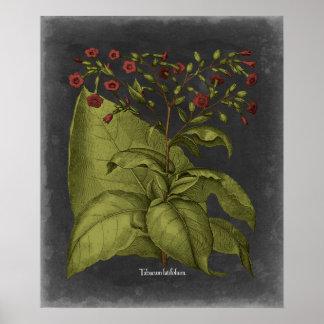 Poster Besler Dramatique I