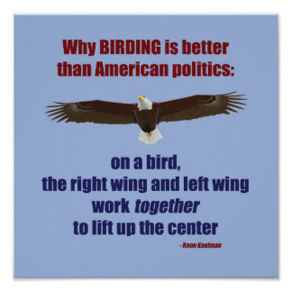 Poster Birding et affiche de la politique