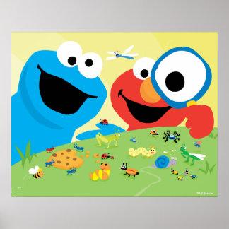 Poster Biscuit et Elmo recherchant des insectes