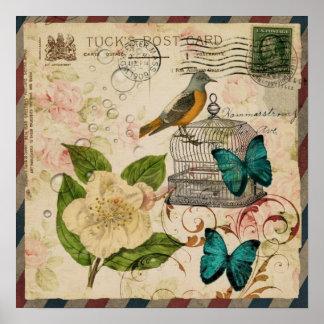 Poster botanique français d'oiseau floral minable